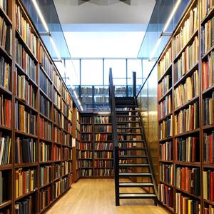 Библиотеки Нижнего Ломова